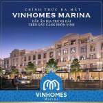 Lý do chắc chắn sẽ thu được lợi nhuận đầu tư biệt thự Vinhomes tại Hải Phòng